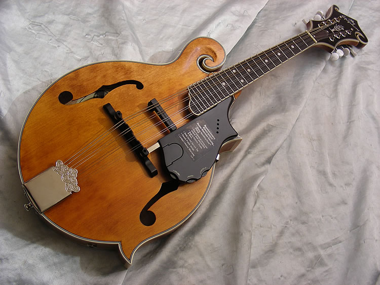 dating epiphone mandolin How to date a gibson using serial numbers, fons and logos  so dating these instruments by features alone is relatively clear-cut in most cases.